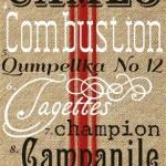 My Top 16 Favorite FREE Vintage Fonts!