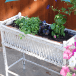 Making a Vintage Planter Safe for an Herb Garden
