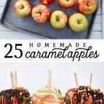 25+ Caramel Apple Combinations