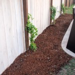 DIY | Customize Your Garden Mulch Color