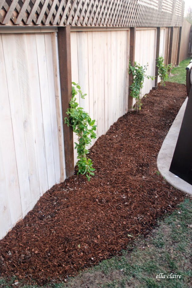 Diy Customize Your Garden Mulch Color Ella Claire