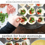 No-Crust Pizza Bites: Gluten Free, Low Carb