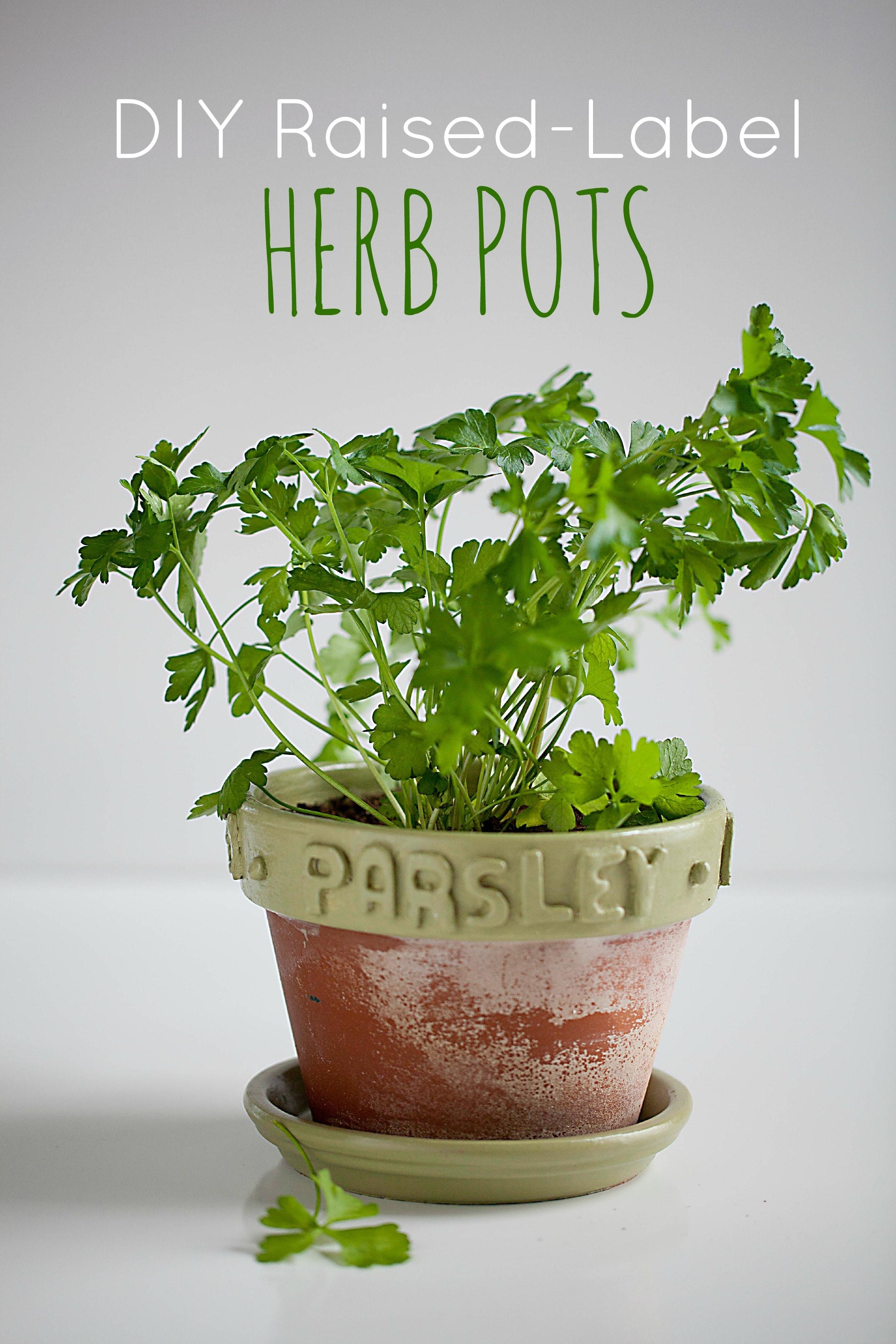 Diy Raised Label Herb Pots Ella Claire