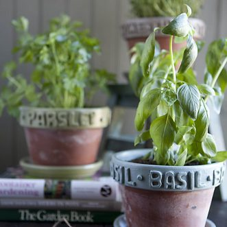 DIY Raised Label Herb Pots