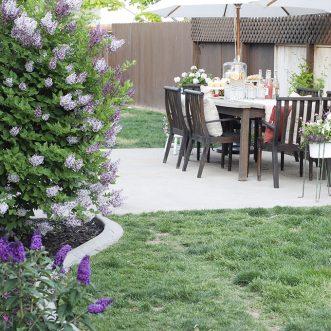 Our Backyard   The Home Depot Patio Style Challenge Redux Sneak Peek