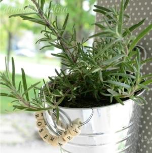 DIY hanging herb garden by Dandelion Patina