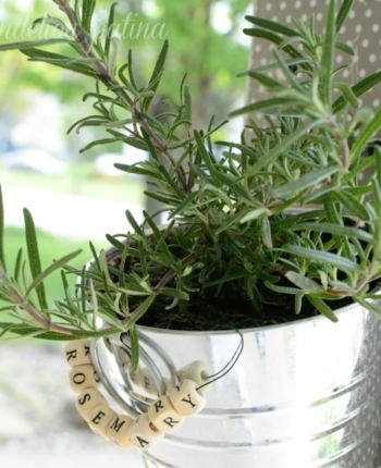 DIY hanging herb garden by Dandelion Patina