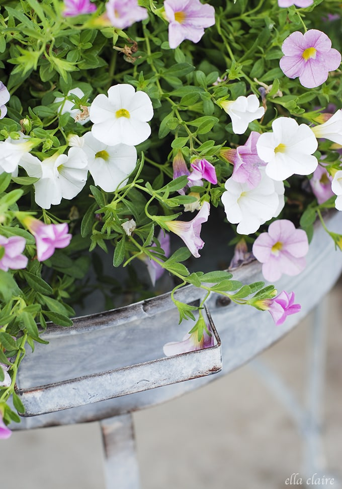 Gorgeous vintage inspired galvanized tray stands with gorgeous hanging baskets