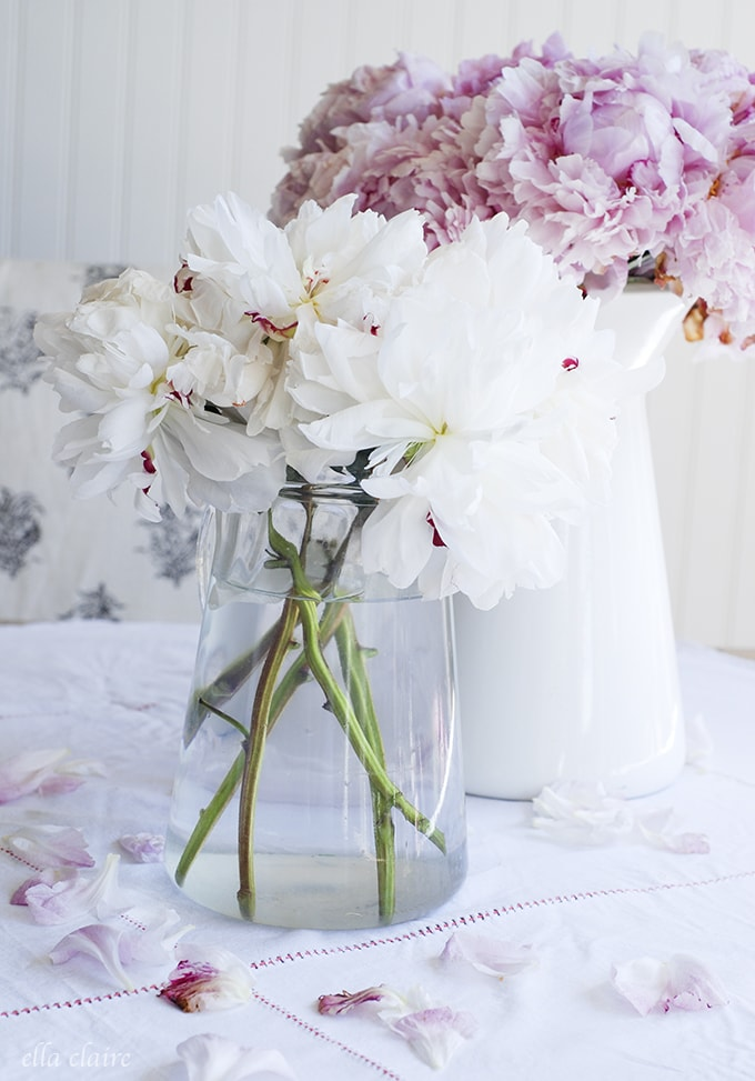 peonies and pretty vignettes
