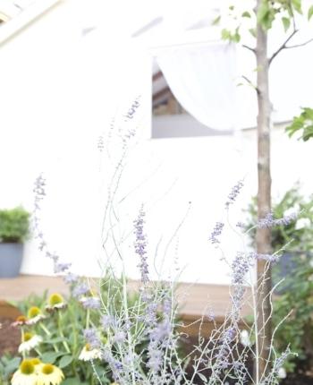 She Shed Ella Claire | cozy cottage retreat
