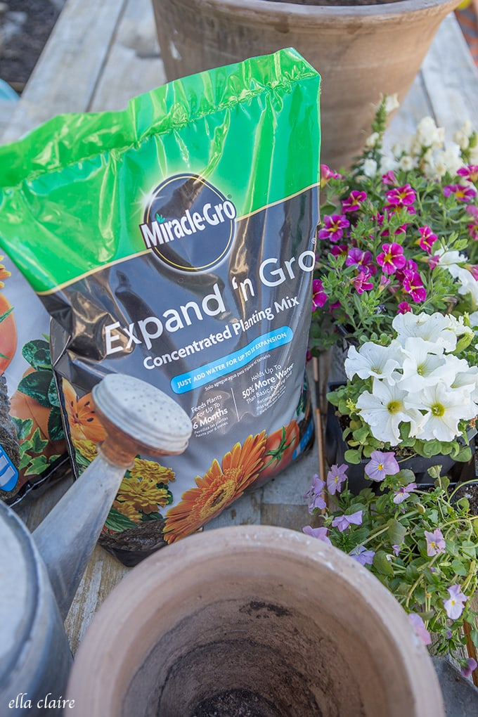 Patio refresh and potting plants