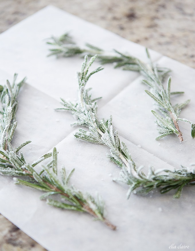 DIY Sugared Rosemary Sprigs Recipe