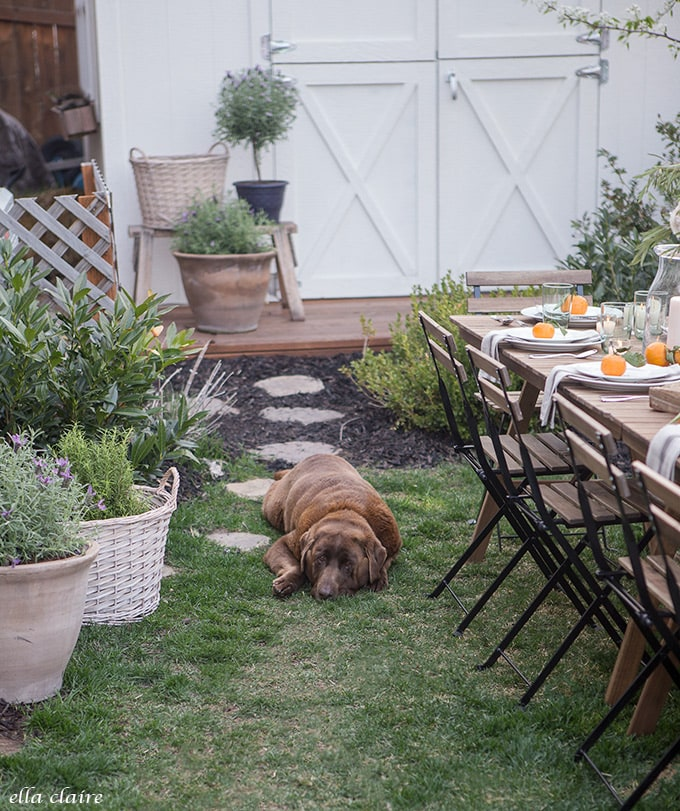 Family friendly Simple Outdoor Entertaining