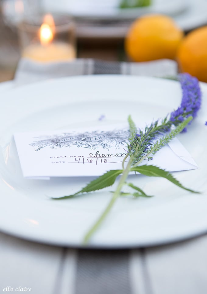Free printable seed packet and sweet flower stem at each place setting