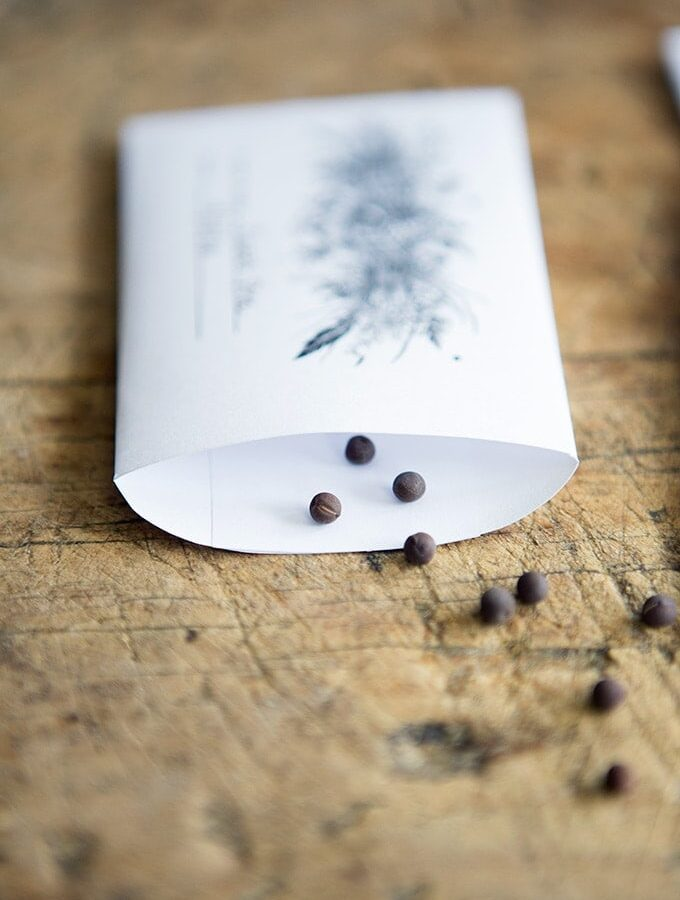 Free Printable Vintage Seed Packet- for place settings, party favors, and seed collecting