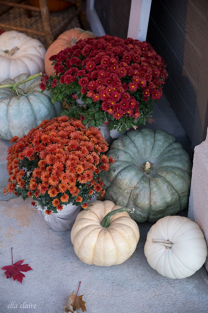 Fall Fairytale pumpkins and mums on a porch decked out for autumn.