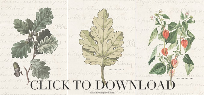 Click to download 3 free fall botanical printables