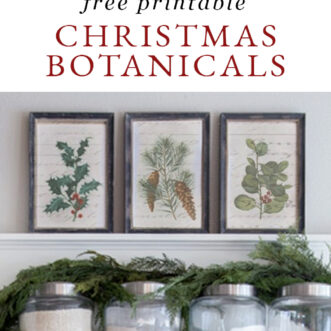 free printable vintage Christmas Botanicals in kitchen