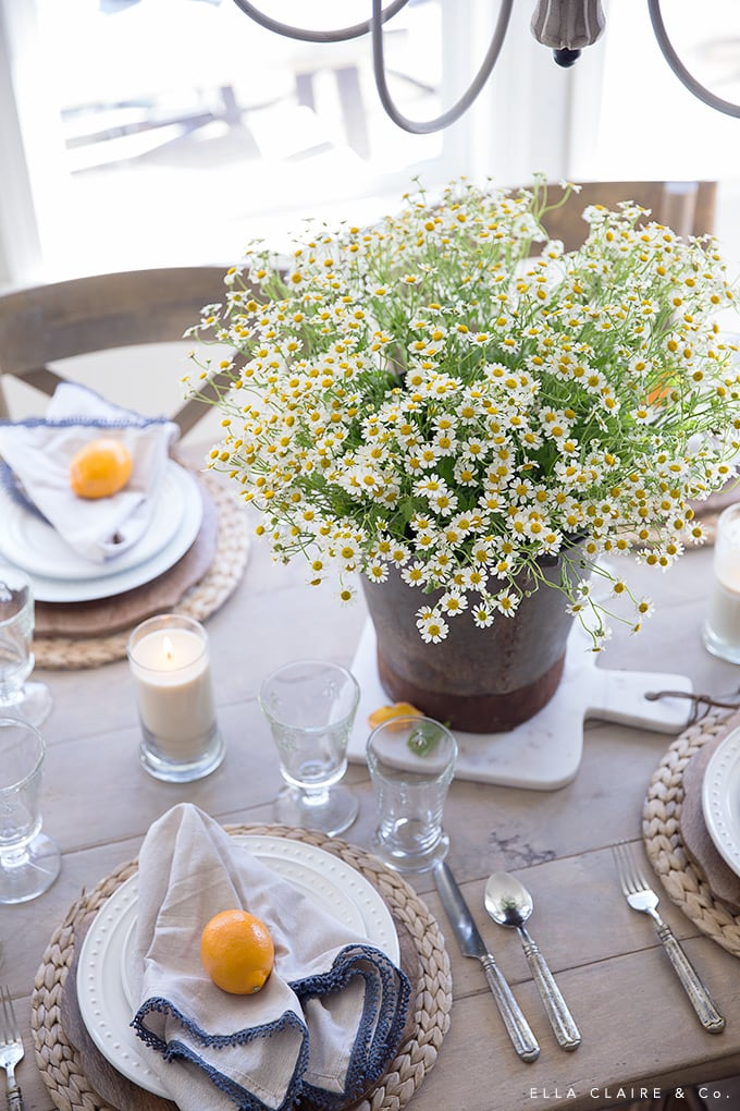 Chamomile in an antique european bucket is an easy centerpiece for a vintage french farmhouse inspired spring table.