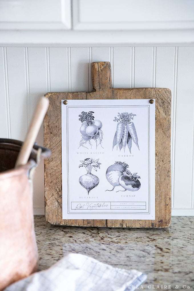 Free vintage Vegetable printable- best artwork for your farmhouse kitchen or home decor.
