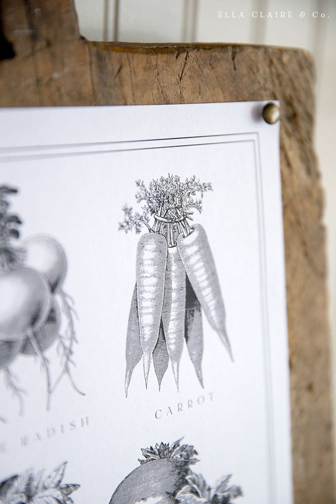 Free vintage Vegetable printable- best artwork for your farmhouse kitchen or home decor.