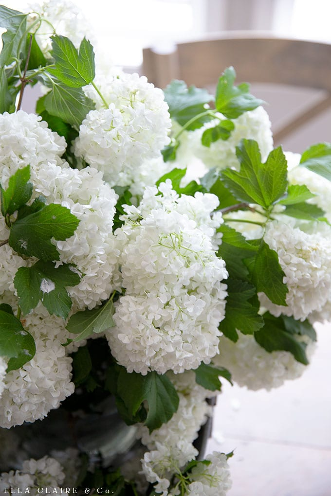 Centerpiece ideas- See how these Viburnum (Snowball) flowers make a beautiful and showstopping flower arrangement.