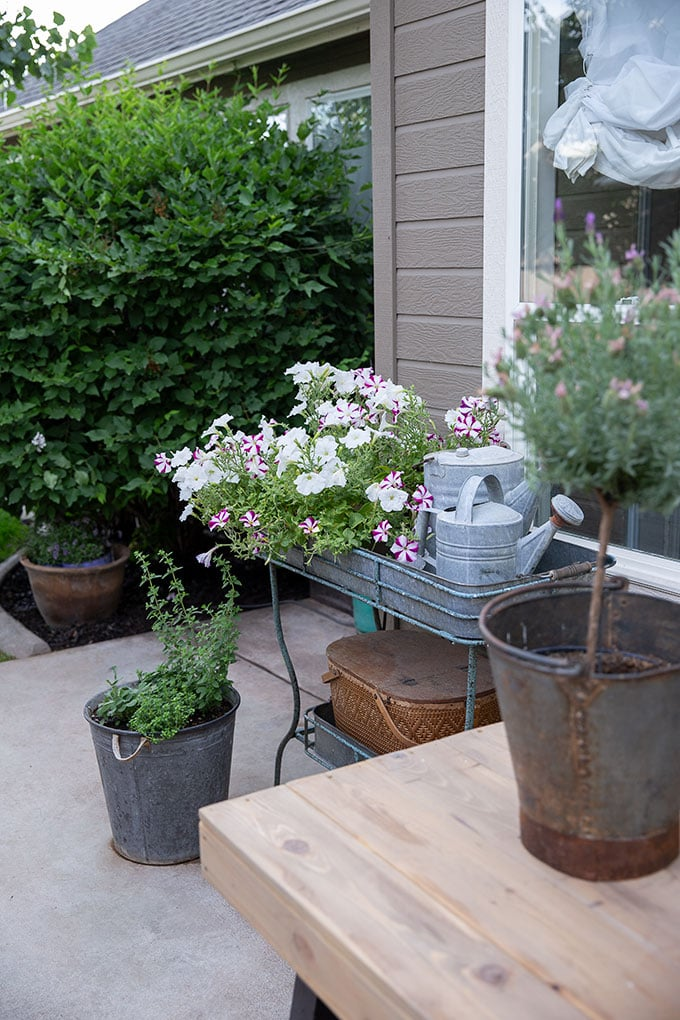 Patio decor can be both pretty and functional. These vintage watering cans, flowers, and a pot filled with fresh herbs add coziness to the outdoor dining area.