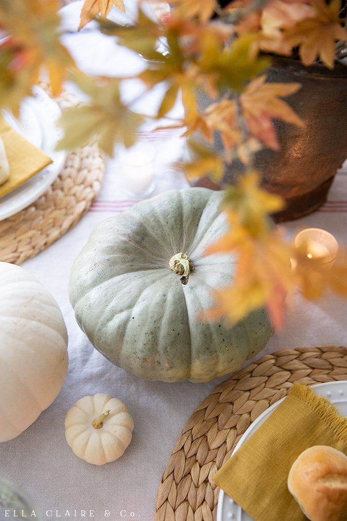green heirloom pumpkins as a centerpiece for a cozy fall table is great for thanksgiving or autumn entertaining