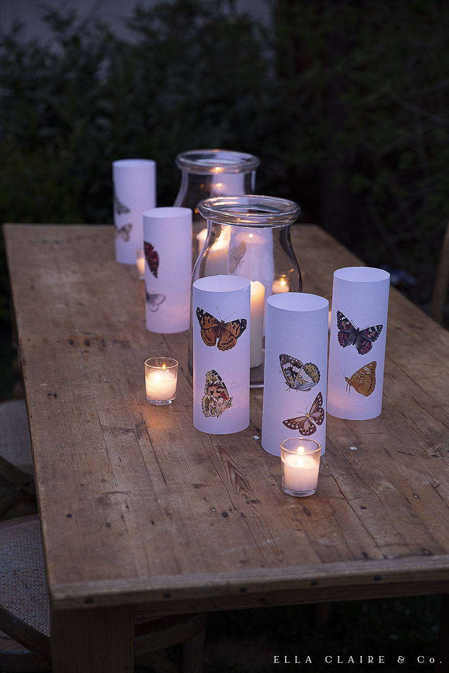 closeup of butterfly luminaries