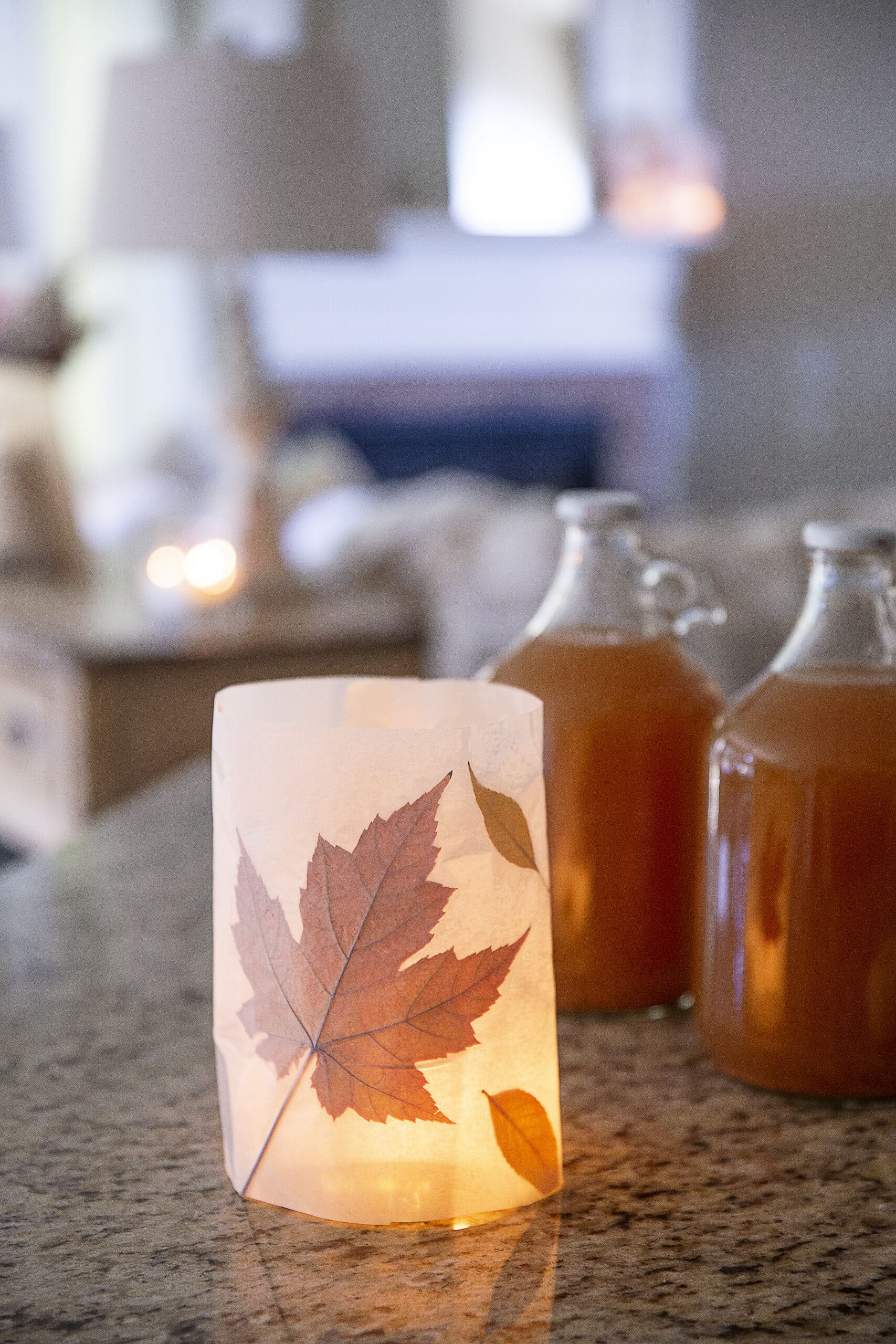 Colorful Fall leaves pressed in luminary