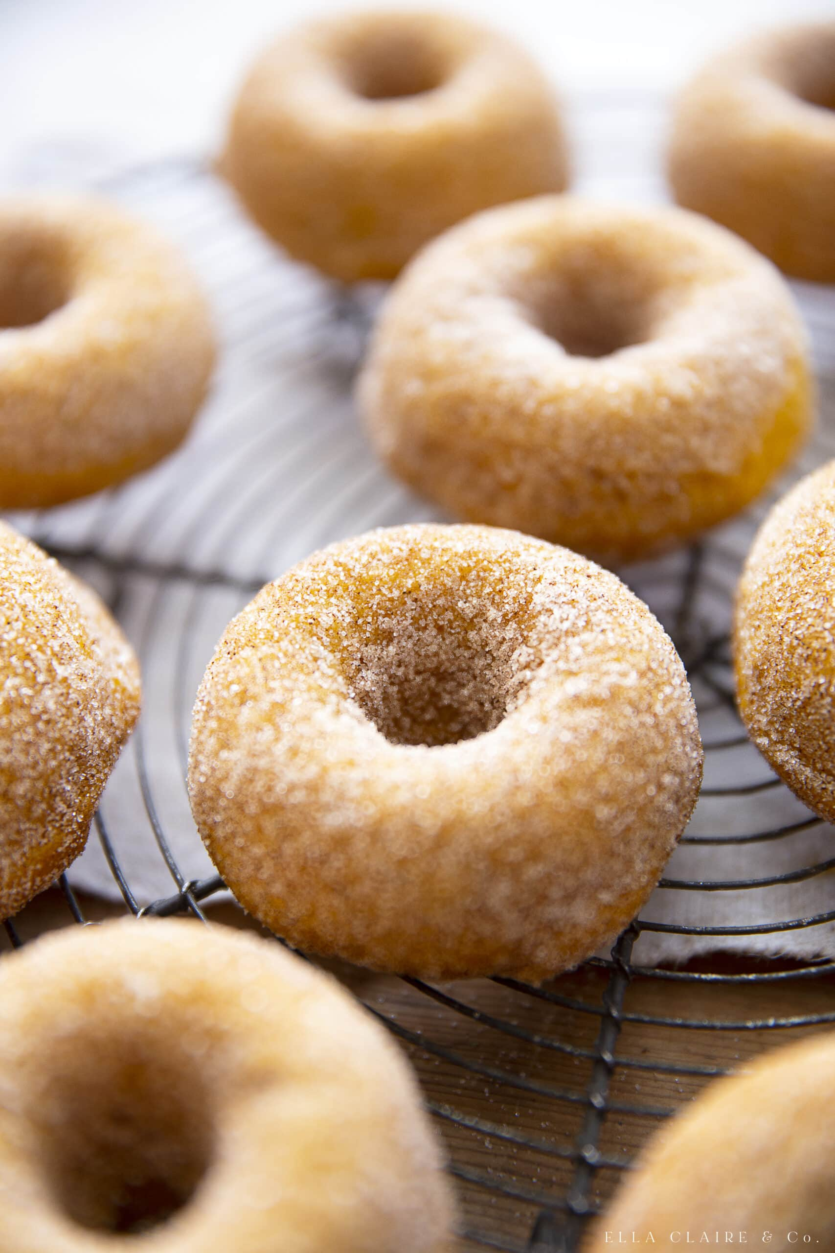 close up details of pumpkin donuts