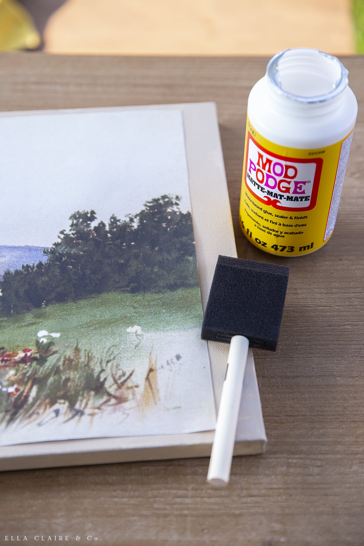 Painting on mod lodge for DIY Canvas Art